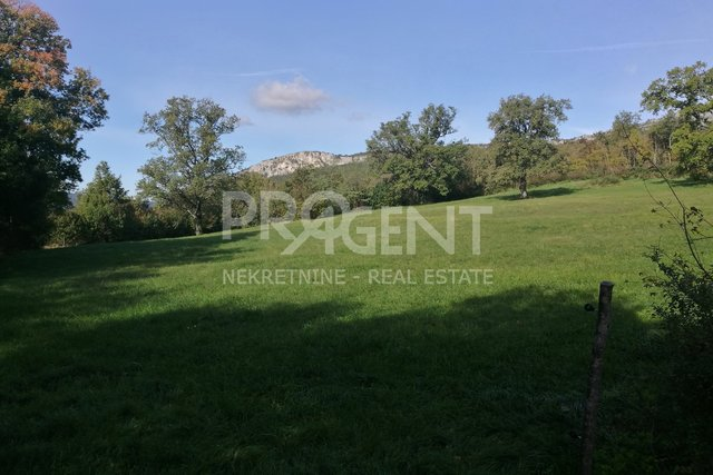 Land, 5974 m2, For Sale, Buzet - Krbavčići