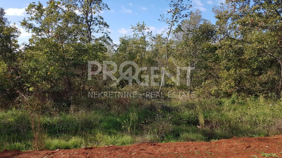 Land, 3666 m2, For Sale, Tar
