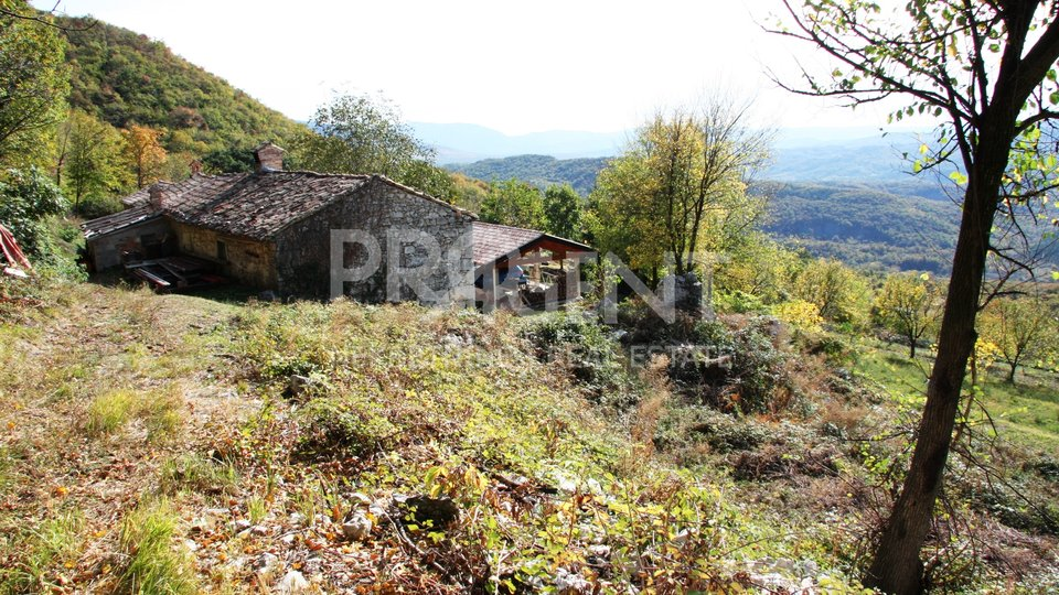 House, 80 m2, For Sale, Lupoglav