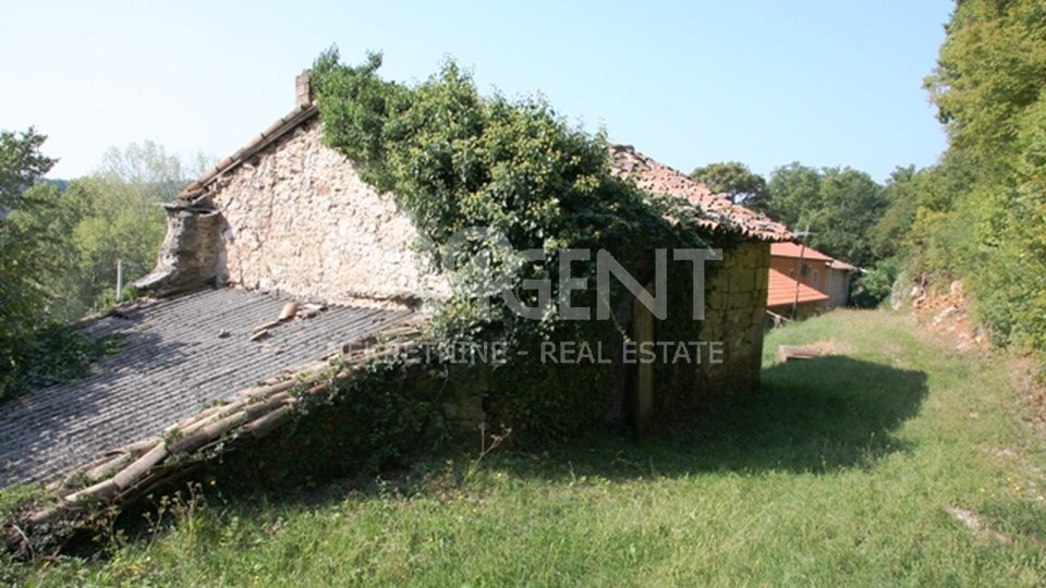 House, 250 m2, For Sale, Buzet