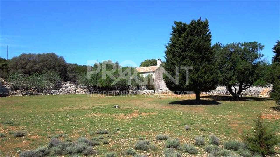 Estate, 77378 m2, For Sale, Mali Lošinj