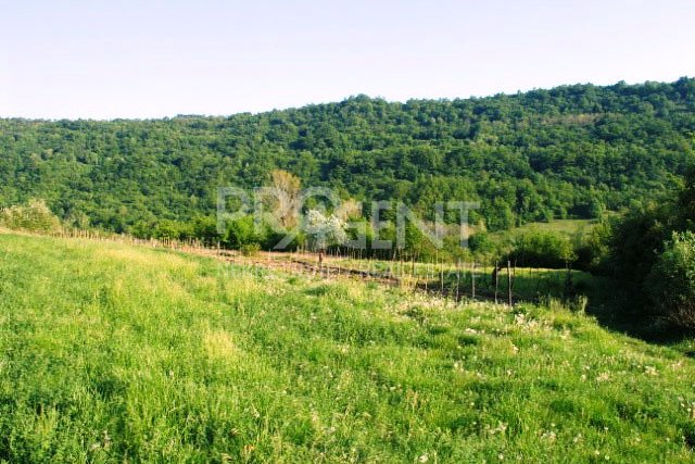 Poljoprivredno zemljište i ucrtana štala