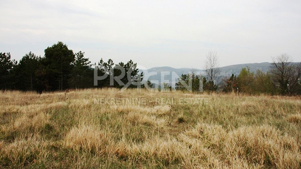 Agricultural land at the top of the hill, 251 m / nm,