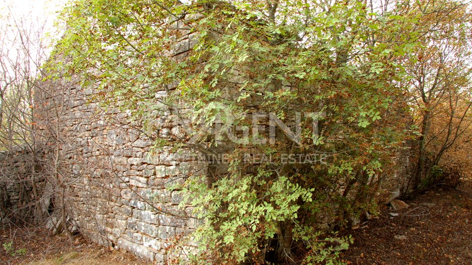 Land, 8927 m2, For Sale, Krmed