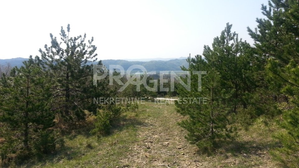 Agricultural land suitable for olive grove, orchard...