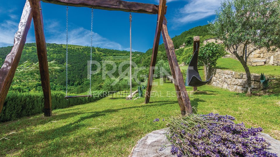 House with swimming pool and view of Motovun