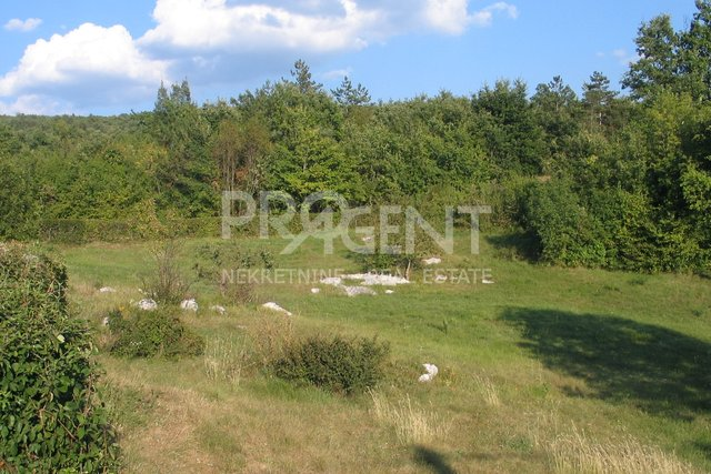 Land, 1109 m2, For Sale, Buzet - Brnobići