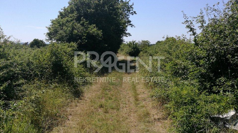 Land, 2152 m2, For Sale, Kanfanar - Maružini