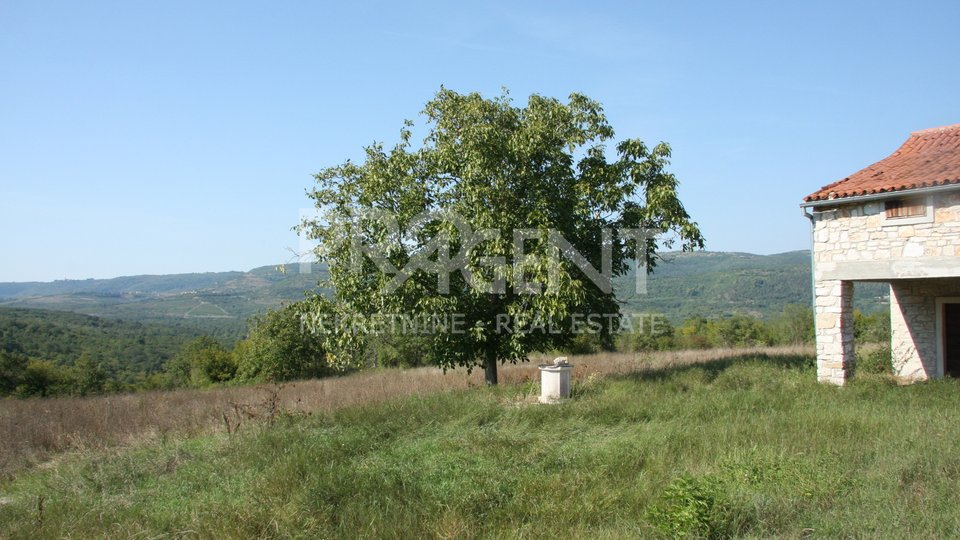Estate, 22206 m2, For Sale, Motovun
