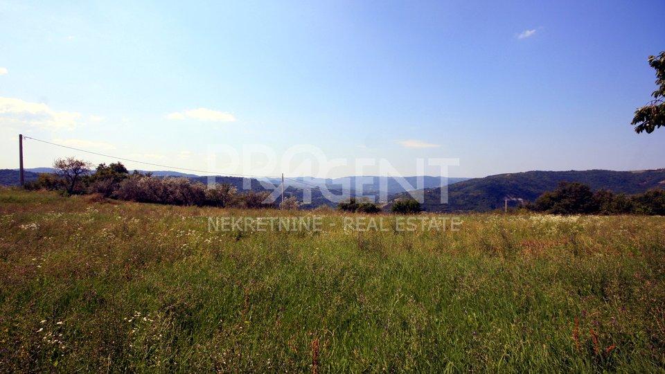 Land, 2872 m2, For Sale, Buzet - Račice