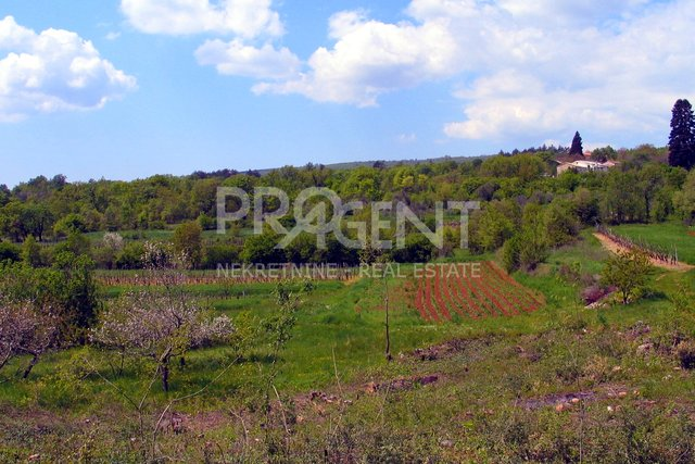 Land, 1628 m2, For Sale, Buzet - Pračana