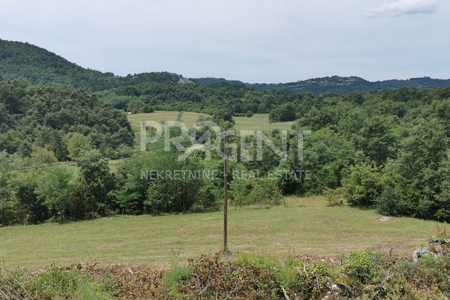 Land, 4220 m2, For Sale, Buzet - Brnobići