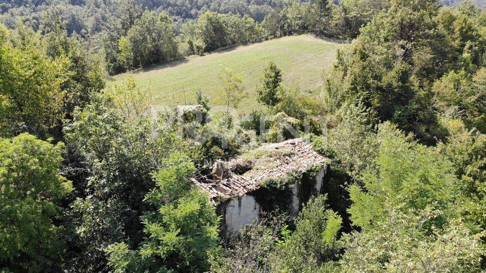 House, 76514 m2, For Sale, Buzet - Račice