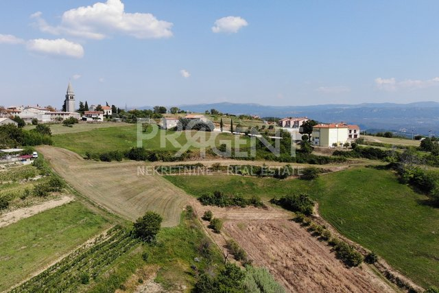 Land, 7739 m2, For Sale, Buzet - Vrh