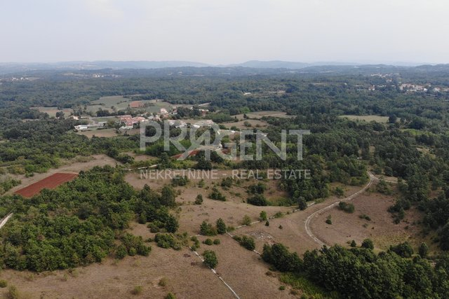 Land, 53534 m2, For Sale, Pazin