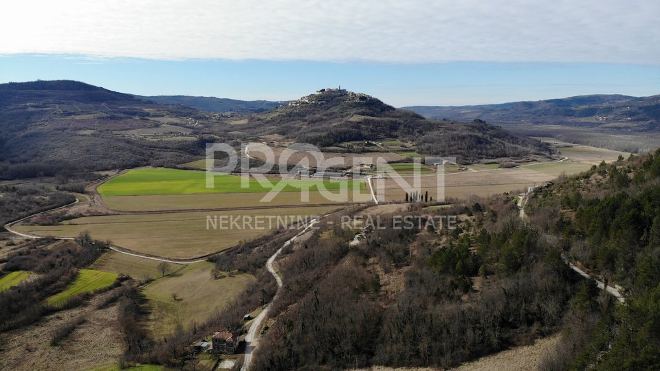 Land, 12800 m2, For Sale, Motovun