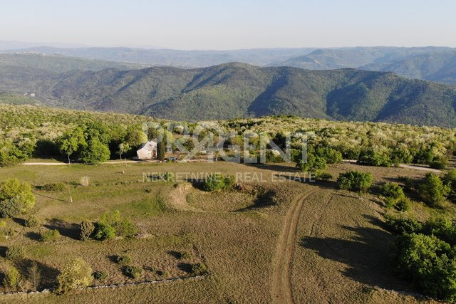 Estate, 53868 m2, For Sale, Oprtalj