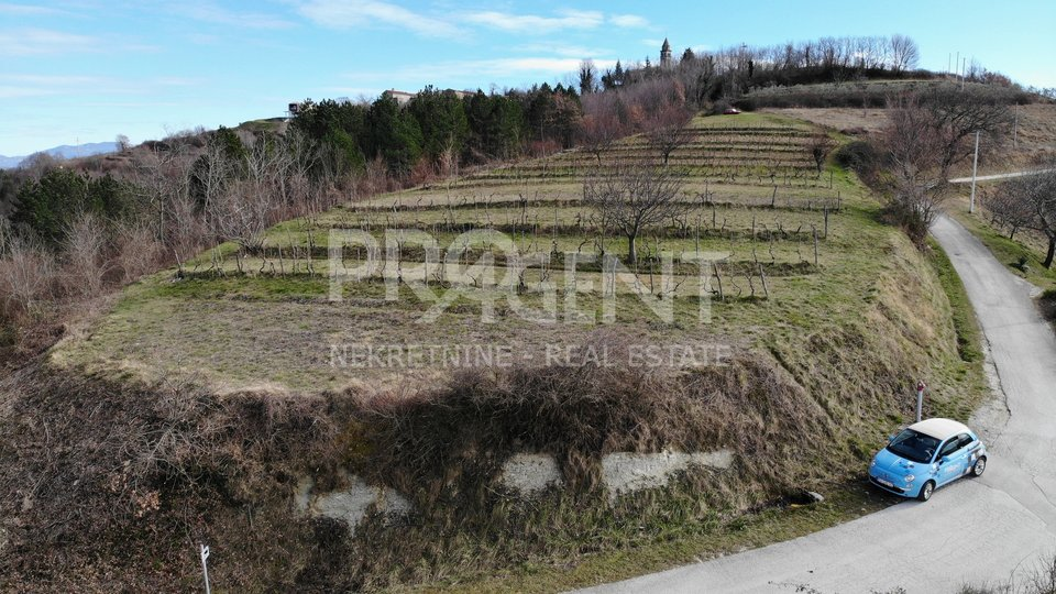 Unique building plot with a beautiful view of Motovun