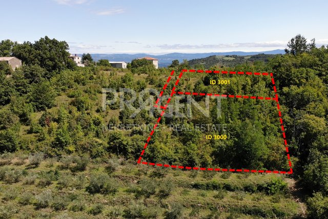 Land, 2606 m2, For Sale, Pazin - Zamask