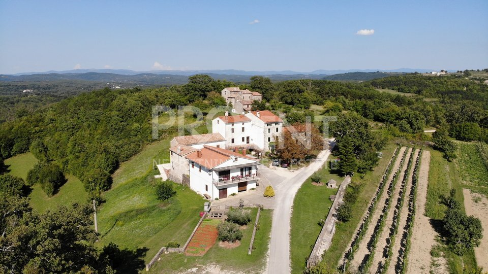 Istria, Grožnjan, building land with open views of the landscape
