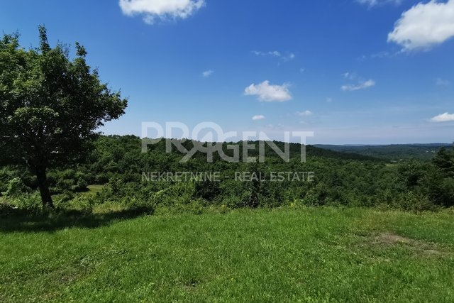 Land, 1115 m2, For Sale, Grožnjan