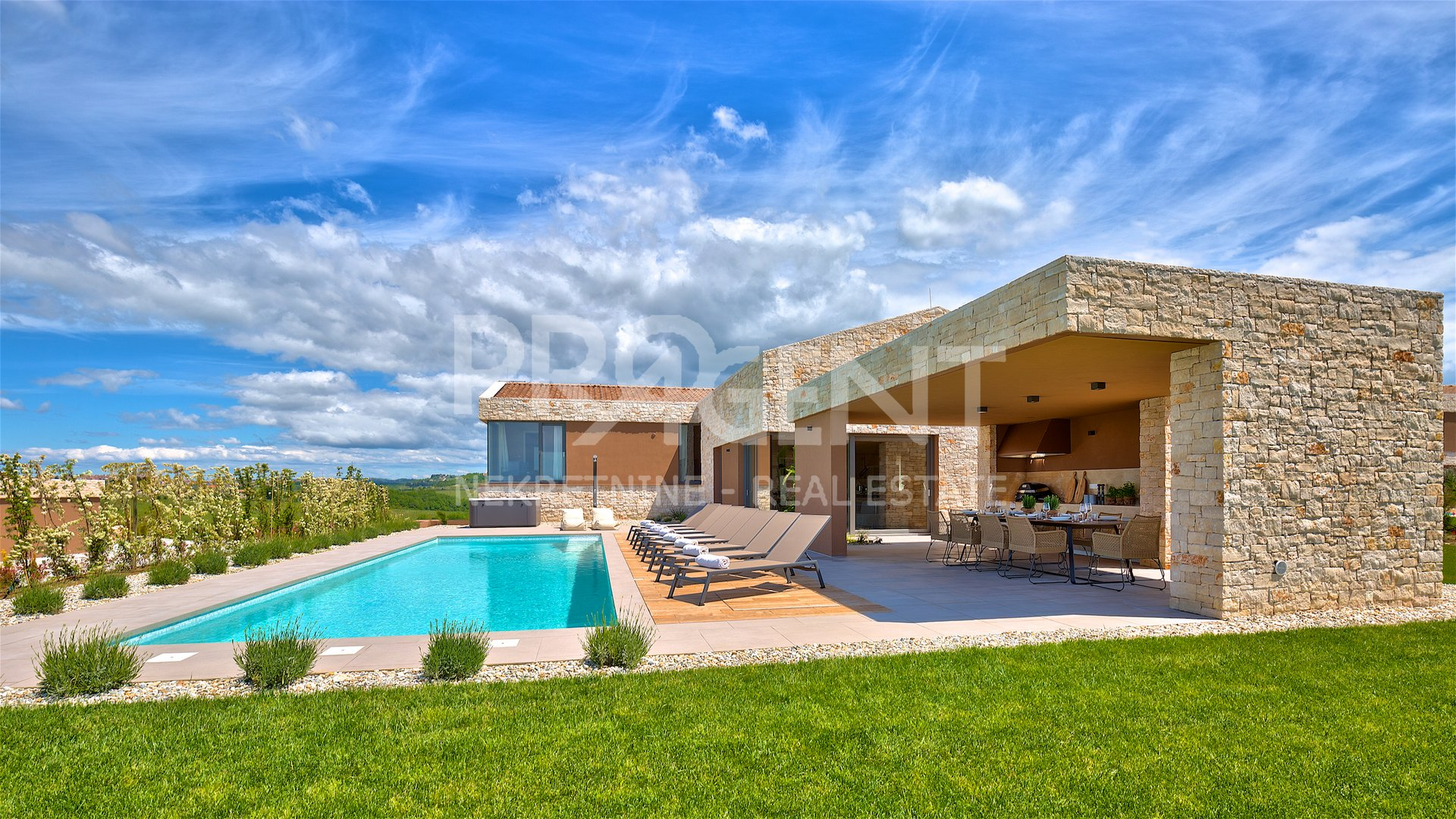 Modern villa overlooking the vineyards and the sea