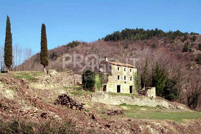 House, 7458 m2, For Sale, Grožnjan