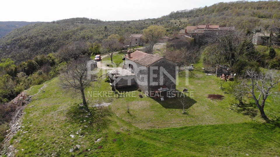 House, 12969 m2, For Sale, Grožnjan