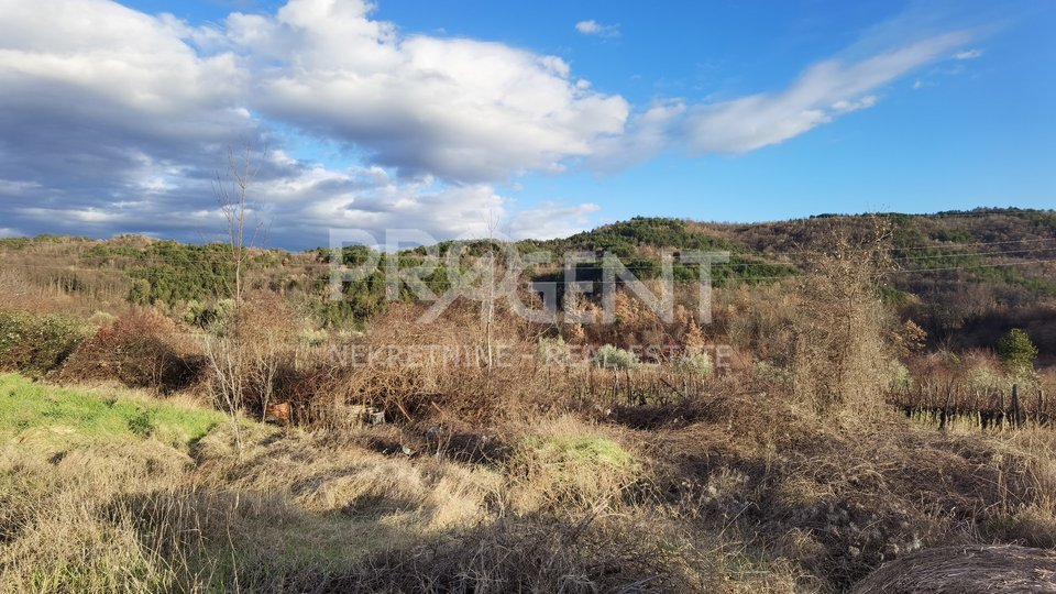 Land, 1900 m2, For Sale, Buzet - Sveti Donat