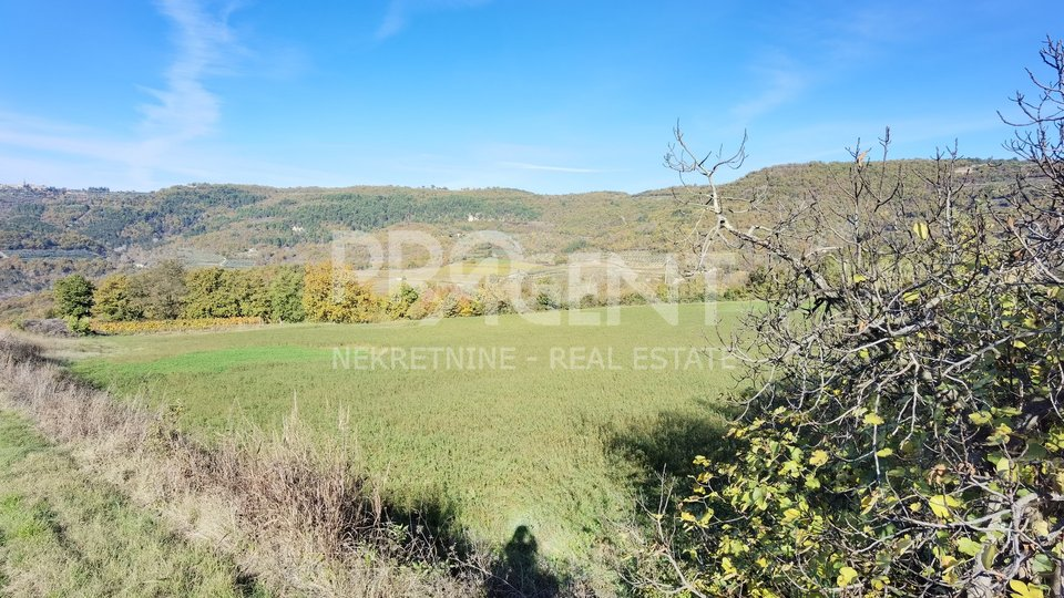 Istria, building land with a view of Grožnjan