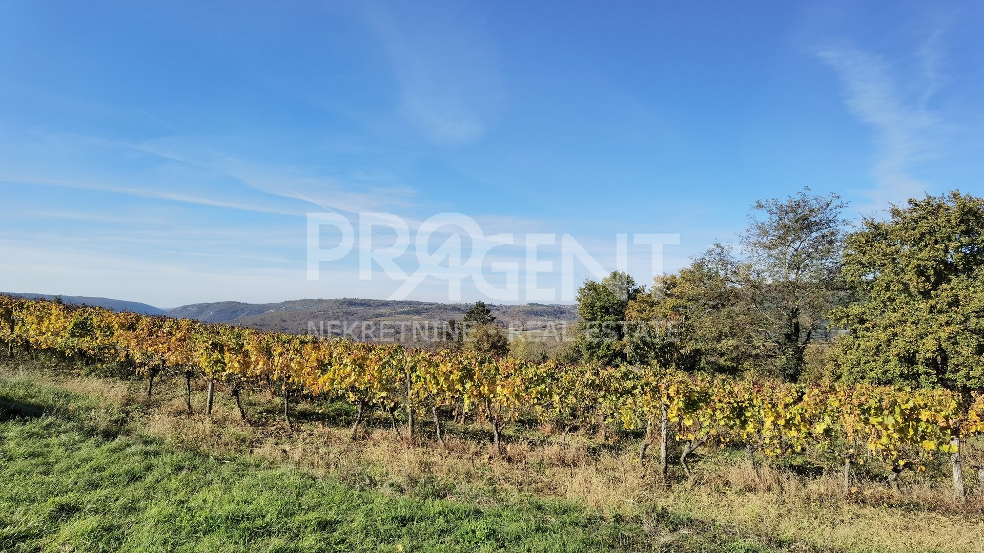 Land, 7657 m2, For Sale, Kostanjica