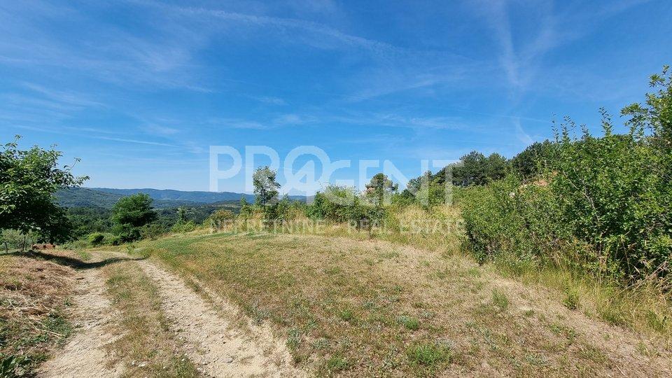 Land, 2272 m2, For Sale, Buzet - Sveti Donat